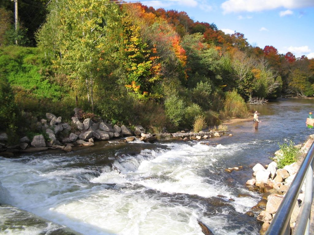 Experience beautiful fall color while hiking biking for Iron fish distillery thompsonville mi