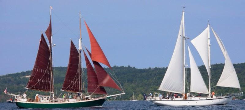 ISEA Released Summer Public Sailing Programs