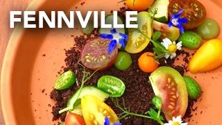 Fennville Guide