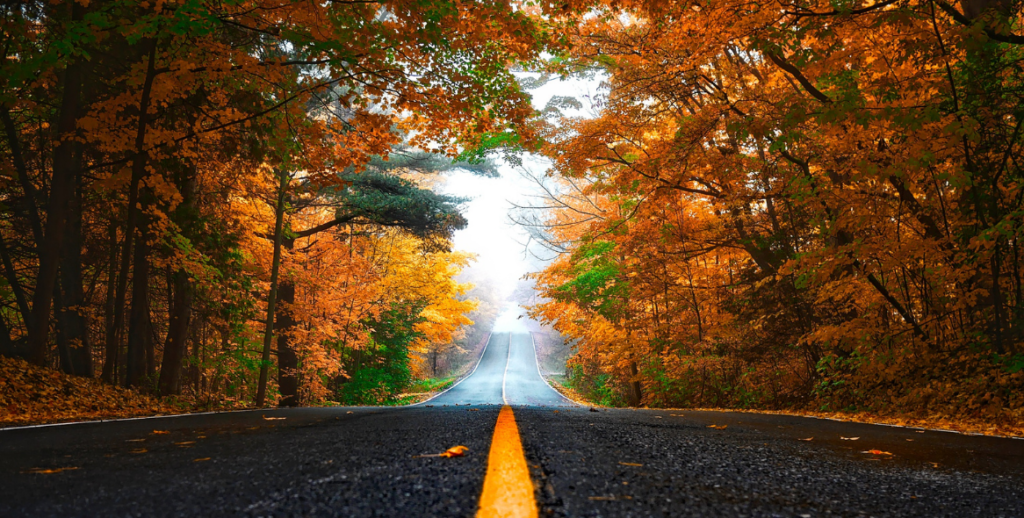 24 Ways to Experience the Fall Colors Across West Michigan